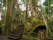 IMG_5162_ubud_monkey_forest